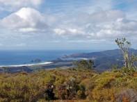 Great Barrier Island 12