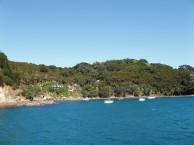 Great Barrier Island 2