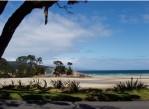 Great Barrier Island 3