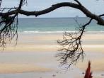 Great Barrier Island 4