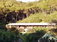 Great Barrier Island 8