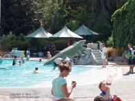 Hanmer Springs Thermal Reserve 4