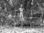 Sculpture on Lily Pond in City Botanic Gardens Brisbane Australia