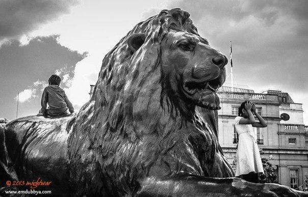 Trafalgar Square lion
